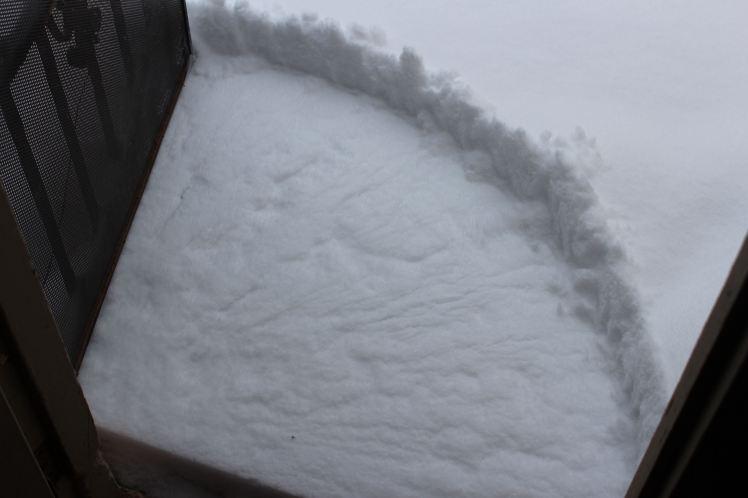 Back door of snow